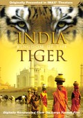 India - Kingdom of the Tiger