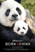 Disneynature Born In China