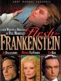 Andy Warhol's Frankenstein