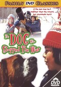 The Dog Who Stopped the War (La Guerre des Tuques)