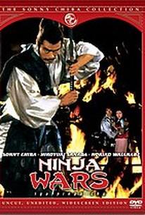 Ninja Wars