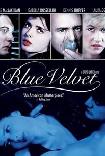 velvet dreams full movie download