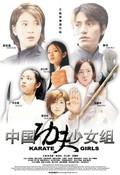 Kongshoudao shaonu zu (Kung Fu Girls)