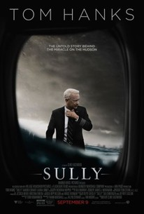 Sully Quotes Stunning Sully 2016  Rotten Tomatoes