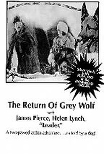 The Return of Grey Wolf