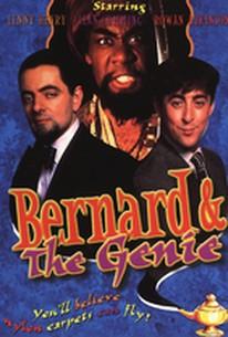 Bernard and the Genie