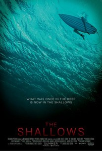 The Shallows 2016 Rotten Tomatoes