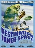 Destination Inner Space