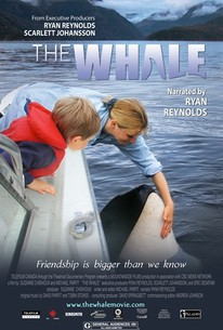Sustainable Cinema: The Whale