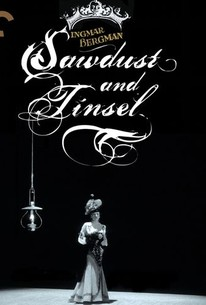 Sawdust and Tinsel