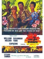 The 7th Dawn