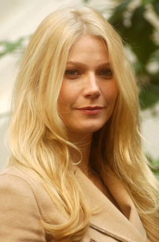 """Gwyneth Paltrow Promotes """"Sky Captain and the World of Tomorrow"""" in Rome"""