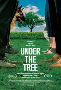 Image result for under the tree 2018