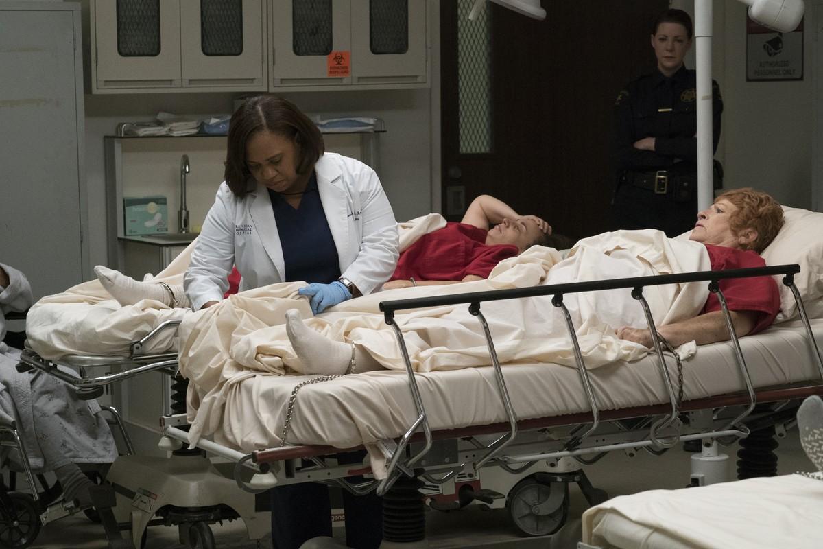 Nice Grays Anatomy Episode Guide Gift - Human Anatomy Images ...