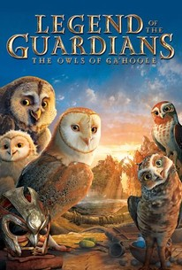 legend of the guardians the owls of ga hoole 2010 rotten tomatoes