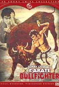 Karate Bullfighter