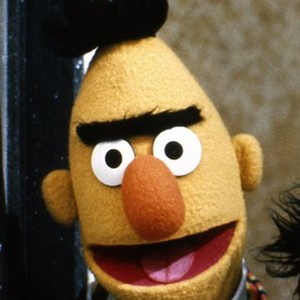 Bert is voiced by Eric Jacobson