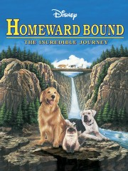 Homeward Bound - The Incredible Journey (1993)