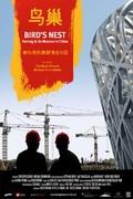 Bird's Nest: Herzog and De Meuron in China