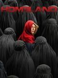 Homeland: Season 4