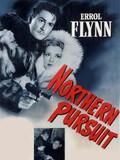 Northern Pursuit