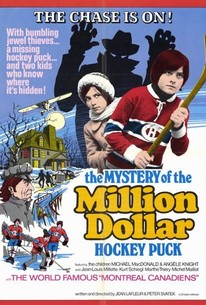 The Mystery of the Million Dollar Hockey Puck