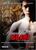 Beautiful Boxer