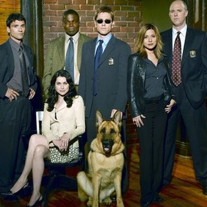Frank Grillo, Rena Sofer, Reno Wilson, Ron Eldard with Hank the guide dog, Marisol Nichols and Michael Gaston (from left)