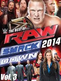 WWE: Best of Raw & Smackdown 2014 Vol. 3