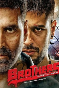 Brothers 2015 Rotten Tomatoes