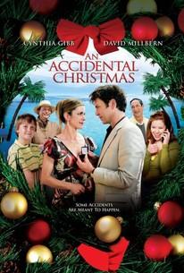 An Accidental Christmas