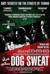 Dog Sweat