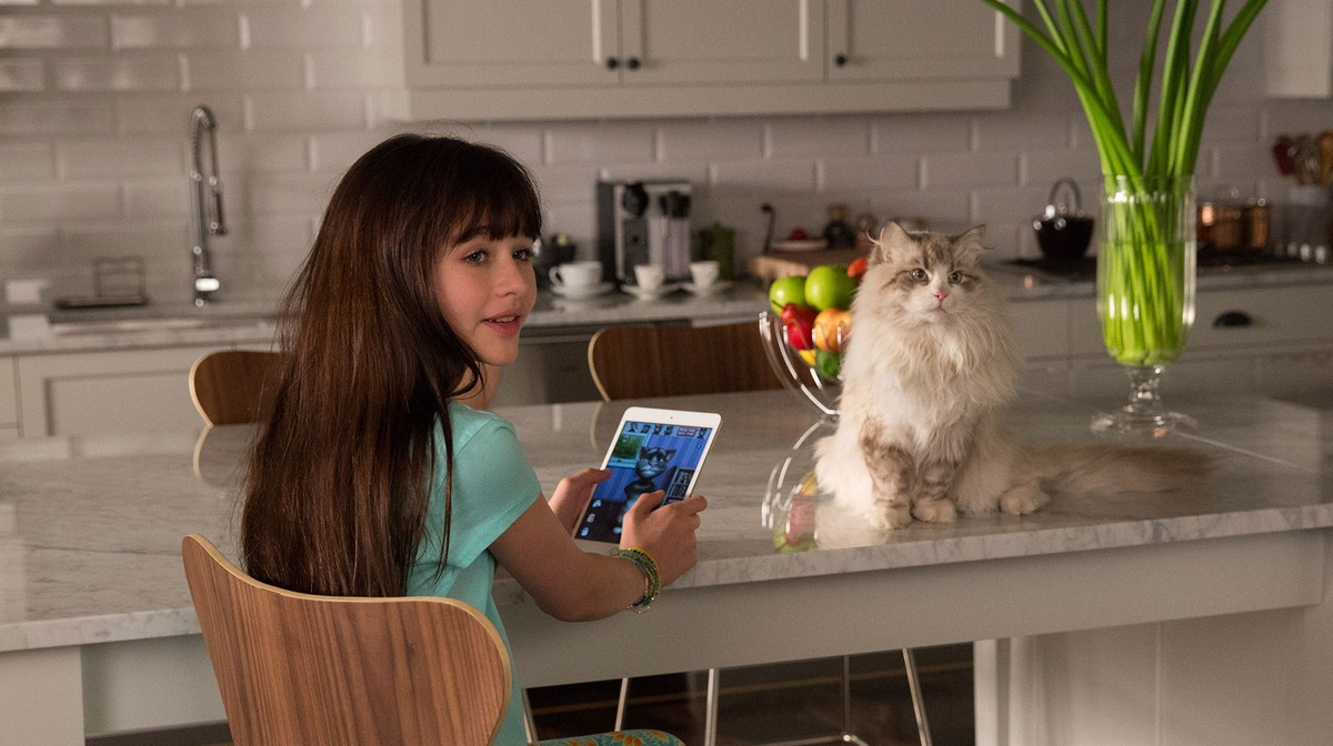 Nine Lives (2016) - Rotten Tomatoes