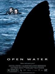 Open Water (2004)