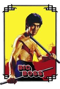 The Big Boss (Tang shan da xiong)