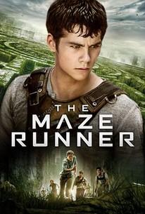 Image result for maze runner