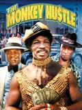 The Monkey Hustle