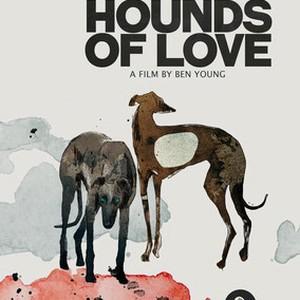 Hounds Of Love Stream