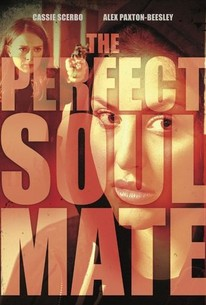 The Perfect Soulmate (2017) - Rotten Tomatoes