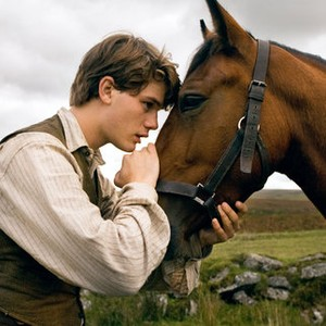 War Horse (2011) - Rotten Tomatoes
