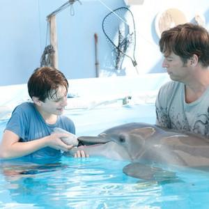 mein freund der delfin 3 stream
