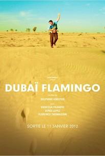 Dubaï Flamingos