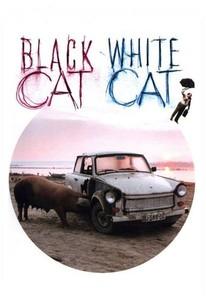 Crna macka, beli macor (Black Cat, White Cat)
