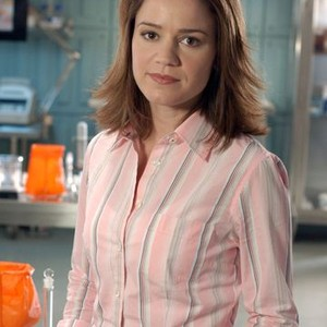Anna Belknap as Det. Lindsay Monroe Messer