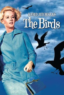 Image result for The Birds (1963)