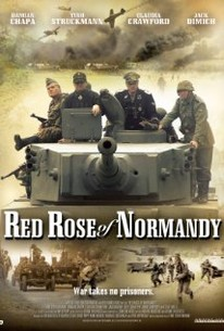 Red Rose of Normandy