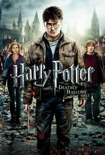 download harry potter deathly hallows part 2 full movie in hindi