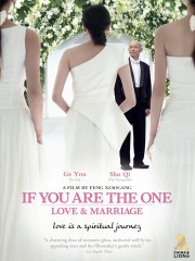 If You Are the One (Fei Cheng Wu Rao)