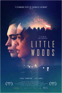 Little Woods (2019) - Rotten Tomatoes