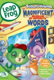 LeapFrog: The Magnificent Museum of Opposite Words